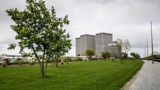 Dakpark Delfshaven