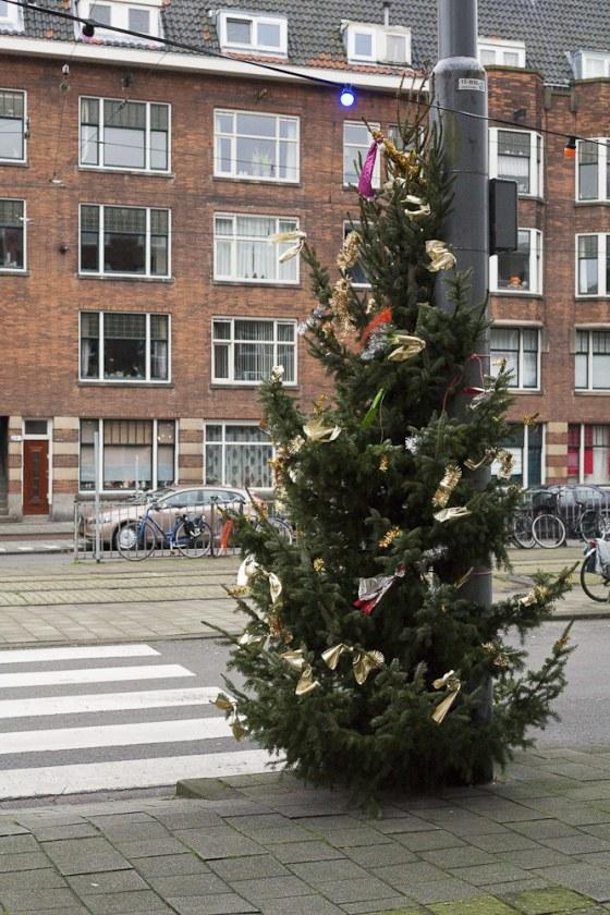 Opzoomeren, kerstbomen