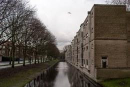 Carnisse_Rotterdam-straat