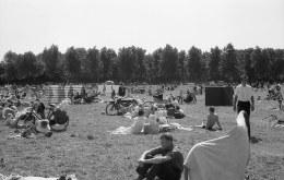 1963-Kralingse-bos-ligweide