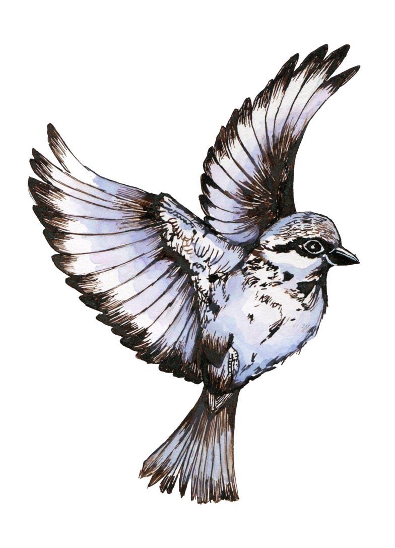 vogelversbeton