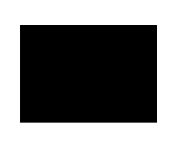 Logo_giraffe_01_600x500