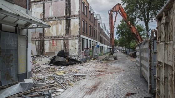 Tweebosstraat 2021 06 21 foto Joke Schot (2) (Kopie)